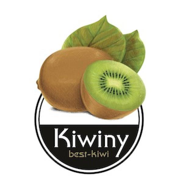 Kiwiny s.r.l.s.