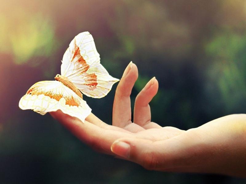 Newbio: benessere, positivit