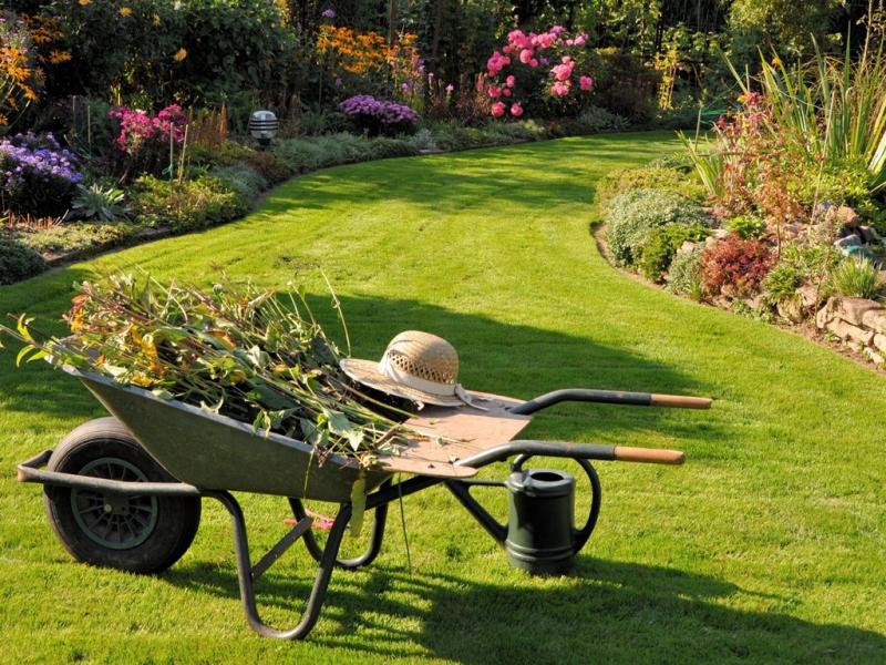 L'erba del vicino, non è sempre la più verde